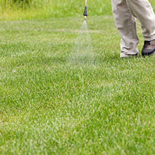 weed spraying services uxbridge